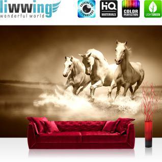 liwwing Fototapete 254x168 cm PREMIUM Wand Foto Tapete Wand Bild Papiertapete - Tiere Tapete Pferde Tiere Fell Wasser Wellen sepia - no. 2934