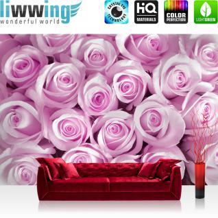 liwwing Vlies Fototapete 300x210 cm PREMIUM PLUS Wand Foto Tapete Wand Bild Vliestapete - Blumen Rose Blüte - no. 186