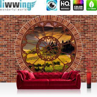 liwwing Vlies Fototapete 416x254cm PREMIUM PLUS Wand Foto Tapete Wand Bild Vliestapete - Steinwand Tapete Steinoptik Stein Fenster Feld Bäume braun - no. 2984