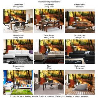 liwwing Vlies Fototapete 104x50.5cm PREMIUM PLUS Wand Foto Tapete Wand Bild Vliestapete - Steinwand Tapete Steinmauer Steine Fenster Himmel Mond Nacht blau - no. 1355 - Vorschau 5