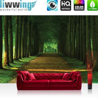 liwwing Fototapete 368x254 cm PREMIUM Wand Foto Tapete Wand Bild Papiertapete - Wald Tapete Wals Bäume Laub Weg Allee Herbst grün - no. 2986