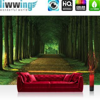 liwwing Vlies Fototapete 416x254cm PREMIUM PLUS Wand Foto Tapete Wand Bild Vliestapete - Wald Tapete Wals Bäume Laub Weg Allee Herbst grün - no. 2986