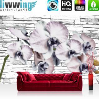 liwwing Vlies Fototapete 312x219cm PREMIUM PLUS Wand Foto Tapete Wand Bild Vliestapete - Orchideen Tapete Orchidee Steinwand Natur Pflanze Wand Steine weiß - no. 1213