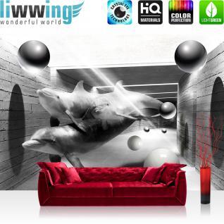 liwwing Vlies Fototapete 416x254cm PREMIUM PLUS Wand Foto Tapete Wand Bild Vliestapete - Tiere Tapete Delphine Tunnel Wasser Bälle Kugeln Licht Kunst schwarz weiß - no. 2685