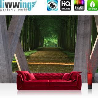 liwwing Vlies Fototapete 312x219cm PREMIUM PLUS Wand Foto Tapete Wand Bild Vliestapete - Architektur Tapete Terrasse Balkon Wald Bäume Weg Allee grau - no. 2432