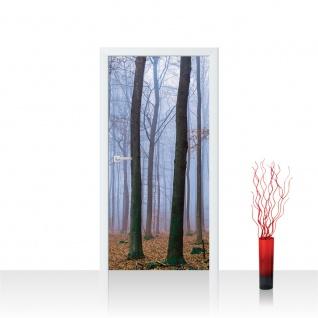 Türtapete - Bäume Wald Laub Nebel   no. 819