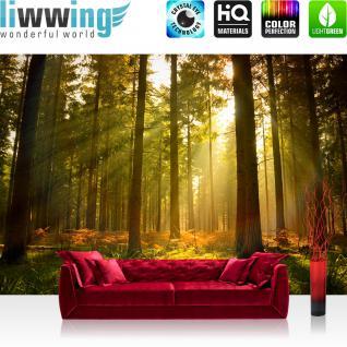 liwwing Vlies Fototapete 312x219cm PREMIUM PLUS Wand Foto Tapete Wand Bild Vliestapete - Wald Tapete Bäume Gras Licht Sonne Nebel natural - no. 1932
