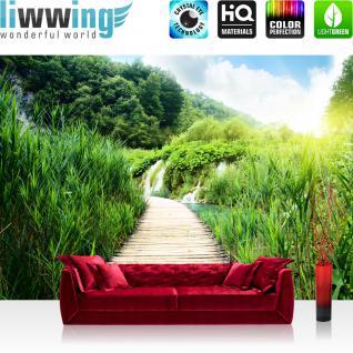 liwwing Vlies Fototapete 350x245 cm PREMIUM PLUS Wand Foto Tapete Wand Bild Vliestapete - WOOD WAY IN DEEP FOREST - Holzweg Sonne Grün Feld Natur Landschaft Gras - no. 093