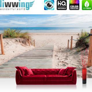 liwwing Vlies Fototapete 416x254cm PREMIUM PLUS Wand Foto Tapete Wand Bild Vliestapete - Strand Tapete Meer Dünen Gras Sand Weg Wolken Himmel natural - no. 2364