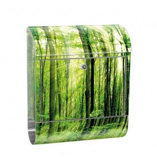 Edelstahl Wandbriefkasten XXL mit Motiv & Zeitungsrolle | Wald Bäume Sonnenstrahlen grün Ruhe | no. 0061