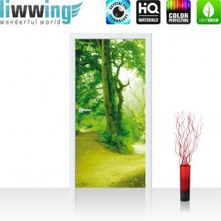 liwwing Türtapete selbstklebend 91x211 cm PREMIUM PLUS Tür Fototapete Türposter Türpanel Foto Tapete Bild - Baum Weg - no. 865