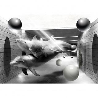 Fototapete Tiere Tapete Delphine Tunnel Wasser Bälle Kugeln Licht Kunst schwarz - weiß | no. 2685