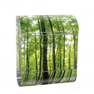 Edelstahl Wandbriefkasten XXL mit Motiv & Zeitungsrolle | Bäume Wald Sonne Wiese | no. 0528