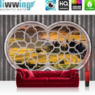 liwwing Vlies Fototapete 300x210 cm PREMIUM PLUS Wand Foto Tapete Wand Bild Vliestapete - Landschaft Tapete Fenster Feld Bäume Straße Hügel Holz gelb - no. 565