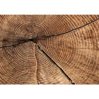 liwwing Vlies Fototapete 104x50.5cm PREMIUM PLUS Wand Foto Tapete Wand Bild Vliestapete - Holz Tapete Stamm Querschnitt Lebensringe Natur braun - no. 2483 - Vorschau 2