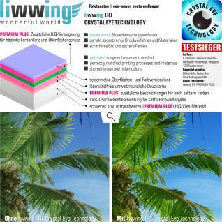 liwwing Vlies Fototapete 312x219cm PREMIUM PLUS Wand Foto Tapete Wand Bild Vliestapete - Natur Tapete Raum Wald Natur Sonnenaufgang Holzwände Holz Scheibe grün - no. 1255 - Vorschau 3