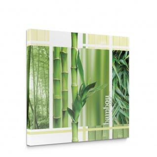 Leinwandbild Blätter Wald Natur | no. 539