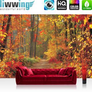 liwwing Vlies Fototapete 400x280 cm PREMIUM PLUS Wand Foto Tapete Wand Bild Vliestapete - Wald Tapete Weg Wald Bäume Herbst Laub Baum Natur braun - no. 994