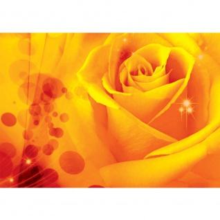 Fototapete Blumen Tapete Kunst Rose Blumen Blüte Liebe Punkte orange | no. 2579