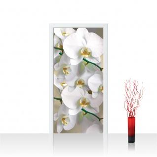 Türtapete - Orchideen Blüten Pflanze | no. 321