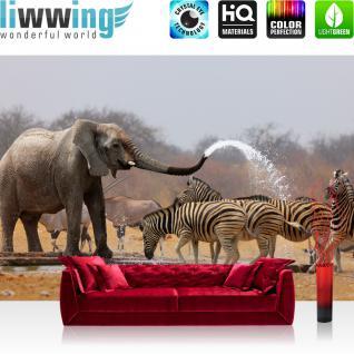 liwwing Vlies Fototapete 416x254cm PREMIUM PLUS Wand Foto Tapete Wand Bild Vliestapete - Afrika Tapete Elefanten Zebra Wasser Giraffe Antilopen braun - no. 1294