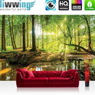 liwwing Fototapete 254x184cm PREMIUM Wand Foto Tapete Wand Bild Papiertapete - Wald Tapete Regenwald Wasserfall Fluss Tropen Aras bunt - no. 3355