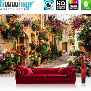 liwwing Vlies Fototapete 208x146cm PREMIUM PLUS Wand Foto Tapete Wand Bild Vliestapete - Frankreich Tapete Gasse Idylle Blume Blumekasten Schatten Häuser natural - no. 1462