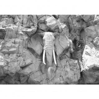Fototapete Afrika Tapete Elephant, Elefant, Steinwand, Elfenbein schwarz - weiß | no. 3229