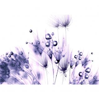 liwwing Fototapete 368x254 cm PREMIUM Wand Foto Tapete Wand Bild Papiertapete - Pflanzen Tapete Pusteblume Tropfen Pflanzen Wasser Wellness lila - no. 311 - Vorschau 2
