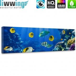 Leinwandbild Underwater World Aquarium Unterwasser Meer Fische Riff Korallenriff | no. 33 - Vorschau 5