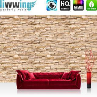 liwwing Fototapete 368x254 cm PREMIUM Wand Foto Tapete Wand Bild Papiertapete - Steinwand Tapete Steinoptik Steine kleinere Steine natural - no. 2832