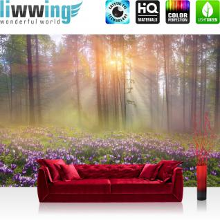 liwwing Vlies Fototapete 350x245 cm PREMIUM PLUS Wand Foto Tapete Wand Bild Vliestapete - Wald Bäume Natur - no. 239
