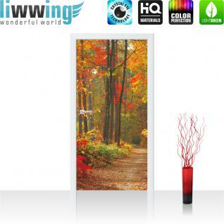 liwwing Türtapete selbstklebend 91x211 cm PREMIUM PLUS Tür Fototapete Türposter Türpanel Foto Tapete Bild - Weg Wald Bäume Herbst - no. 994