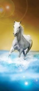 Türtapete - Pferd Wasser | no. 1014 - Vorschau 5