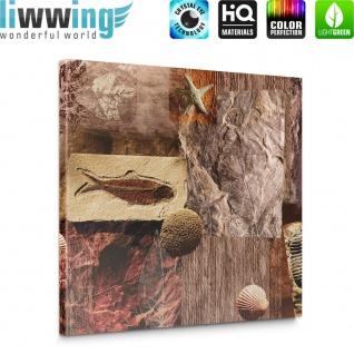 Leinwandbild Muscheln Abstrakt Kunst Eingebungen Braun Meerestiere Blätter | no. 282 - Vorschau 5