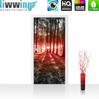 liwwing Türtapete selbstklebend 91x211 cm PREMIUM PLUS Tür Fototapete Türposter Türpanel Foto Tapete Bild - Sonnenuntergang Wald Bäume Wiese - no. 640