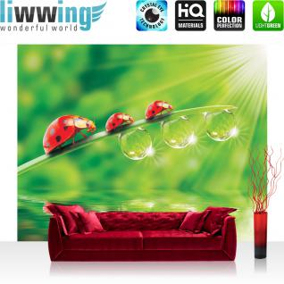 liwwing Fototapete 254x168 cm PREMIUM Wand Foto Tapete Wand Bild Papiertapete - Natur Tapete Marienkäfer Blatt Natur Wasser Regentropfen grün - no. 1200