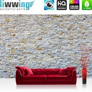 liwwing Vlies Fototapete 400x280 cm PREMIUM PLUS Wand Foto Tapete Wand Bild Vliestapete - Steinwand Steine Wand - no. 168