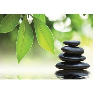 Fototapete Natur Tapete Steine Wasser Blätter grün | no. 468