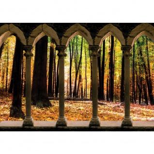 Fototapete Wald Tapete Säule Natur Laub Herbst Bäume braun | no. 2801