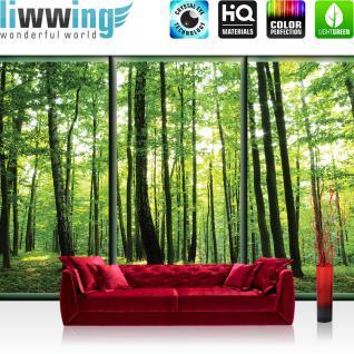 liwwing Fototapete 368x254 cm PREMIUM Wand Foto Tapete Wand Bild Papiertapete - Wald Tapete Wälder Bäume Natur Rahmen grün - no. 1558