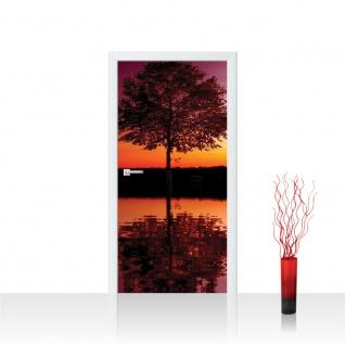 Türtapete - Baum Wasser Sonnenuntergang | no. 1102