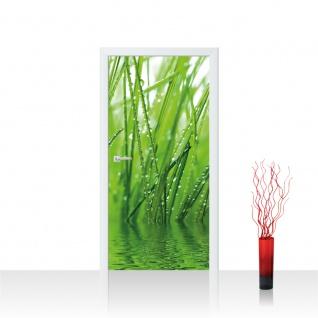 Türtapete - Gräser Blatt Wasser Gras Tau Grashalm Tropfen   no. 4299