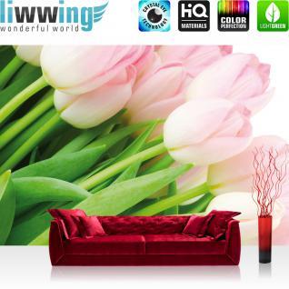 liwwing Vlies Fototapete 300x210 cm PREMIUM PLUS Wand Foto Tapete Wand Bild Vliestapete - Blumen Tapete Blumen Rosa Tulpen Blüte grün natur rosa - no. 1110
