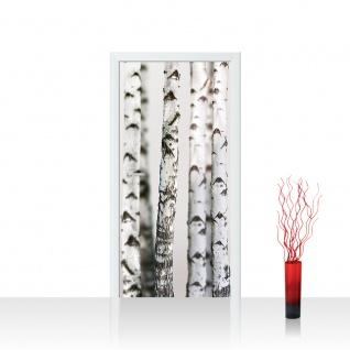 Türtapete - Black an White Birch Trunks Birkenwald 3D Birke Stämme Wald   no. 44