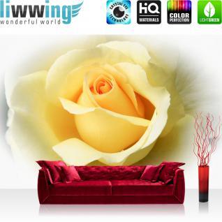 liwwing Fototapete 368x254 cm PREMIUM Wand Foto Tapete Wand Bild Papiertapete - Blumen Tapete Blüten Rose Liebe gelb - no. 2253
