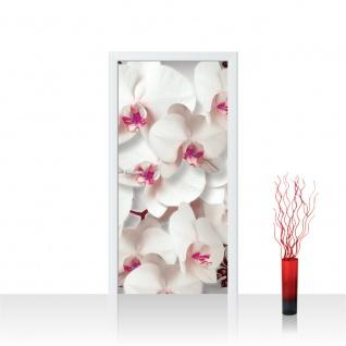 Türtapete - Orchideen Blüten Pflanze | no. 320