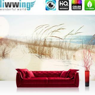 liwwing Vlies Fototapete 350x245 cm PREMIUM PLUS Wand Foto Tapete Wand Bild Vliestapete - Strand Meer Nordsee Ostsee Beach Wasser Blau Himmel Sonne Sommer - no. 148