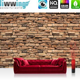 liwwing Vlies Fototapete 208x146cm PREMIUM PLUS Wand Foto Tapete Wand Bild Vliestapete - Steinwand Tapete Steinoptik Steine Steintapete braun - no. 2892