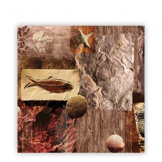 Leinwandbild Muscheln Abstrakt Kunst Eingebungen Braun Meerestiere Blätter | no. 282 - Vorschau 2